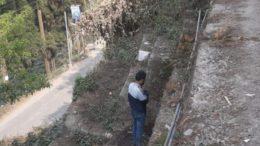 Nirmal Bangal