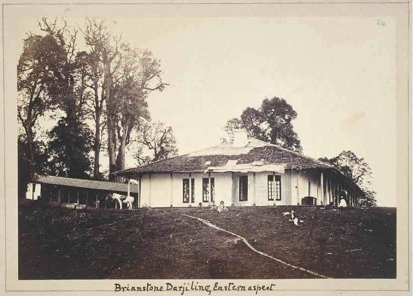 brainstone_Darjeeling