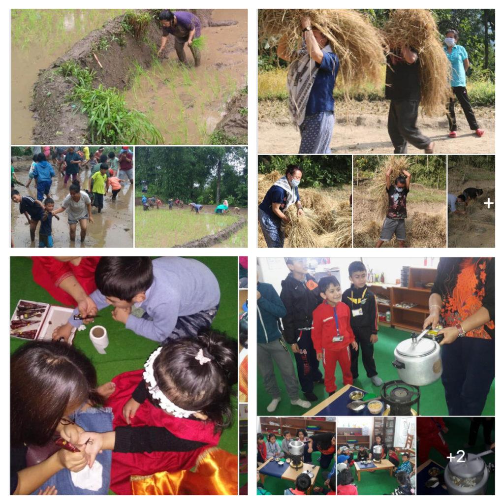 DMHC School Activities