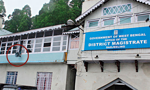 Darjeeling District Magistrate