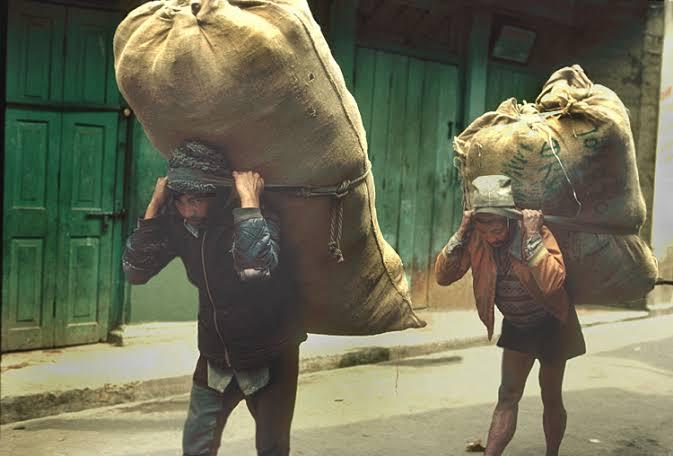 Darjeeling Labour