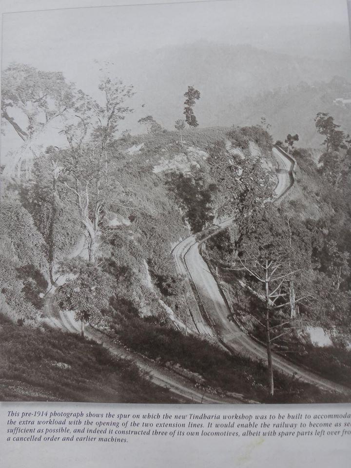 Tindharey