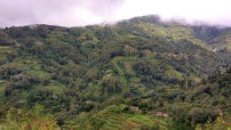 Sikkim Darjeeling