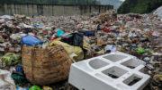 Trash Talking - Plastic Waste